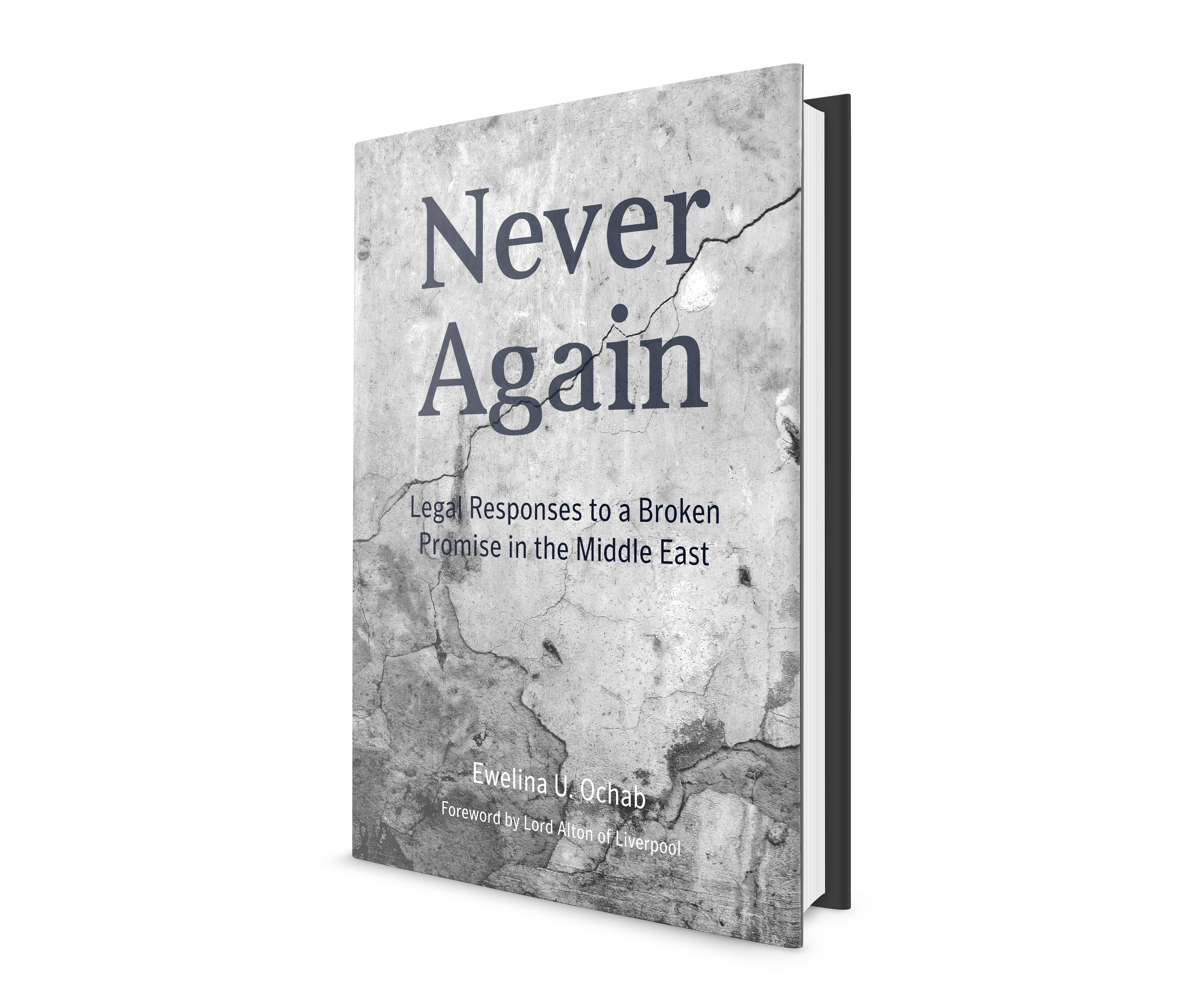 Never Again - 3dBook