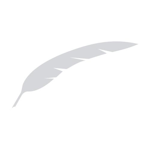 img-blackstone-logo-1x1