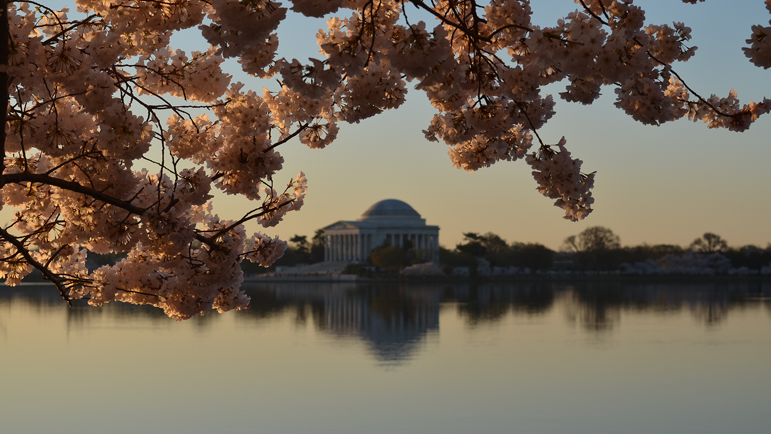 jeffersonmemorial-blog-041119