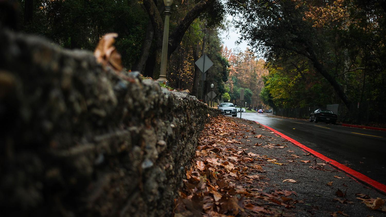 sidewalk-blog-041320