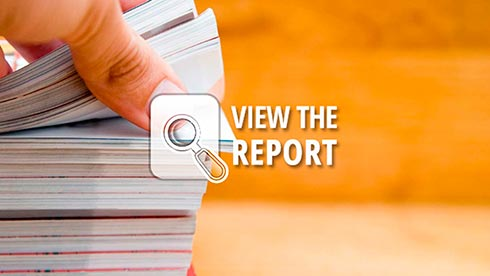 View The Report