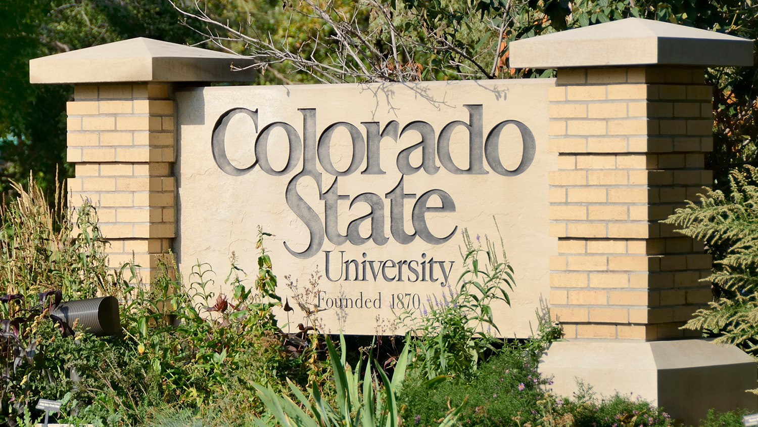 Colorado State University Sign