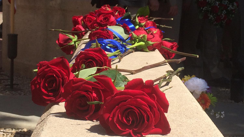 img-memorial-roses