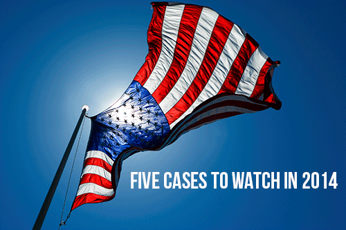 Five Cases to Watch in 2014