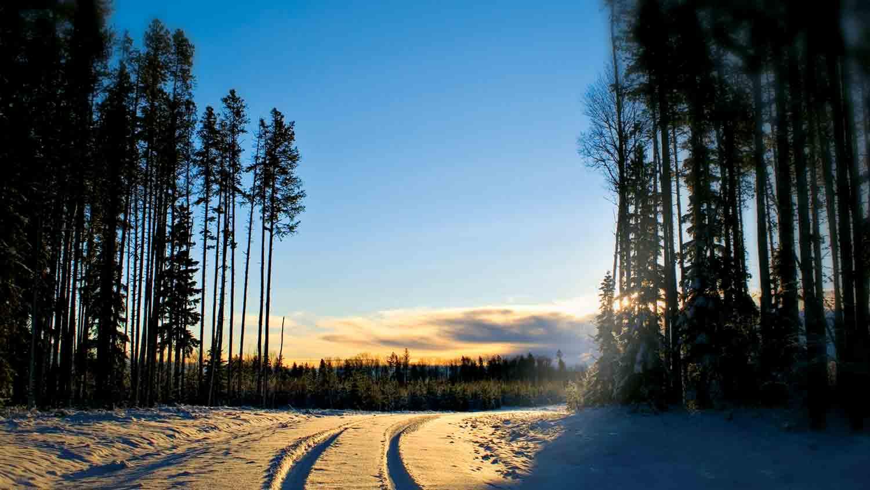 img-trails-trough-snow